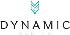 Dynamic Gaming Solutions